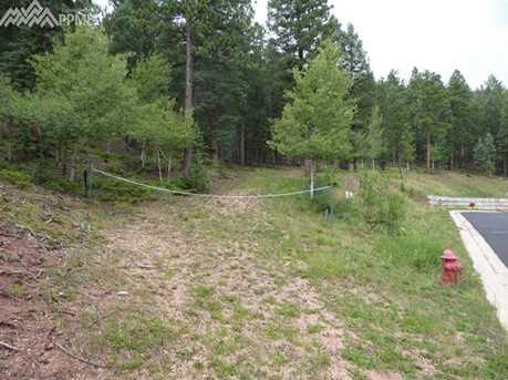 1309 Spruce Ridge Lane - Photo 3
