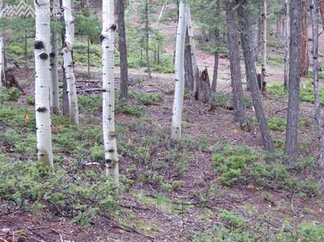 1309 Spruce Ridge Lane - Photo 4