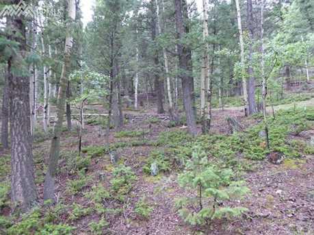 1309 Spruce Ridge Lane - Photo 5