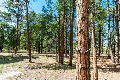 19005 Hilltop Pines Path - Photo 1