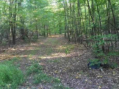 Dryer Rd Trail 29 - Photo 23