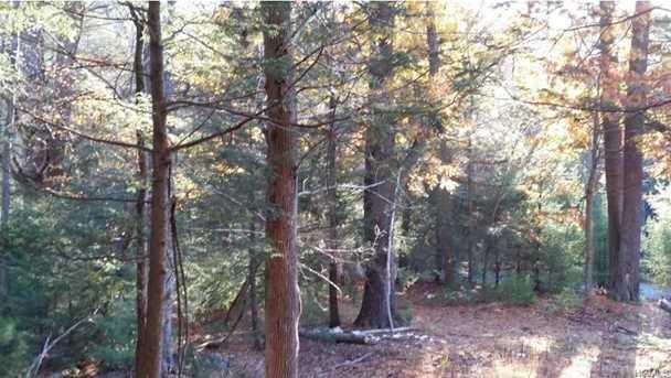 Pine Kill Road - Photo 5
