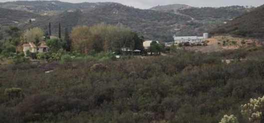 0000 Montiel Truck Trail 17 - Photo 5