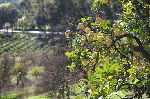6922 El Camino Del Norte Lot B - Photo 15
