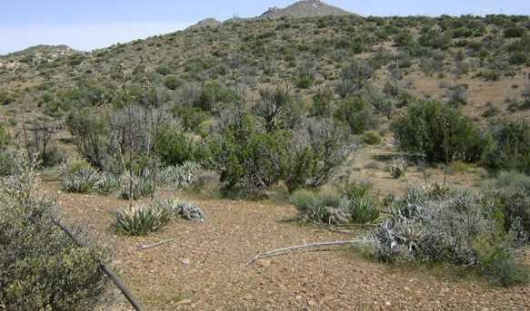 42.86 Acres Carrizo Gorge & Hwy 8 9 - Photo 7