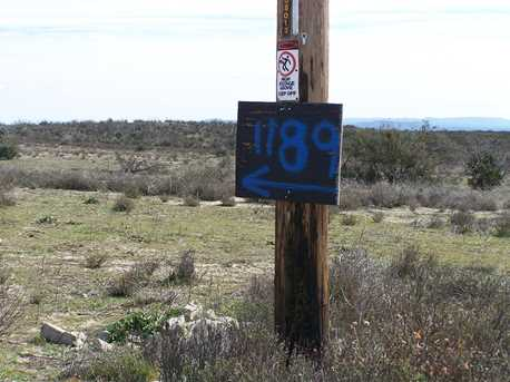 1187 Tierra Real Lane 16 - Photo 9