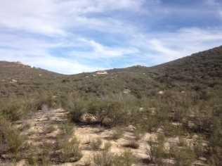 Montezuma Valley 00 - Photo 11