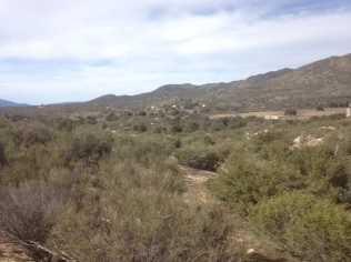 Montezuma Valley 00 - Photo 3