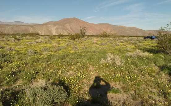 658 Indian Head Ranch 42 - Photo 7