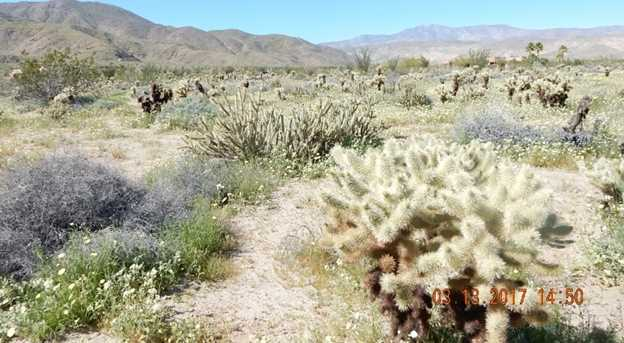 658 Indian Head Ranch 42 - Photo 13