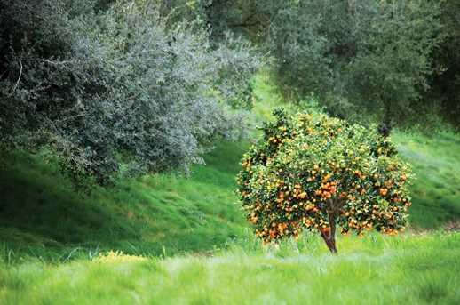 5965 Camino Del Rey - Photo 23
