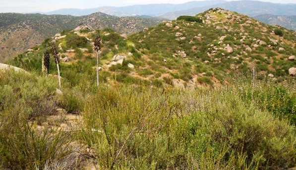 8.77 Acres Ramona Highlands 1 - Photo 7