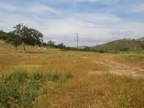 26346 Old Julian Highway - 71+ Acres 13,14,16 - Photo 11