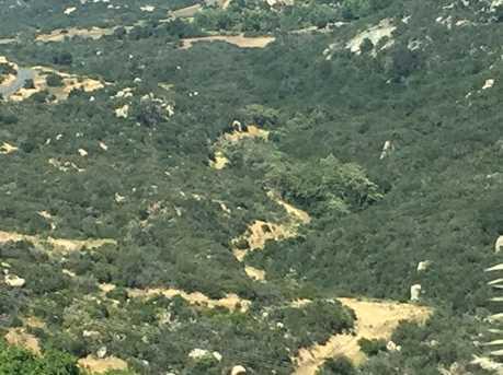 0 Mt. Olympus 19 - Photo 17