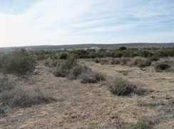 600 Tierra Del Sol 1 - Photo 1