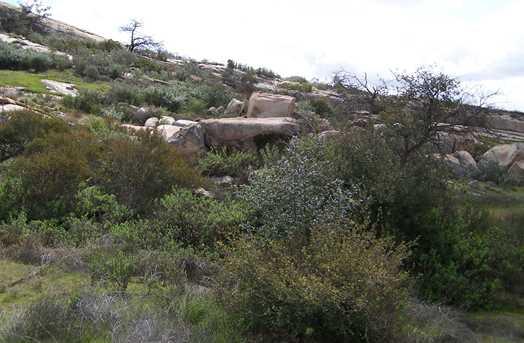 0000 Mahogany Ranch Rd Lot 12 Tr 14000 - Photo 9