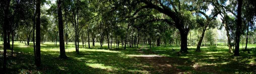 Xxxxx Meadow Bluff Vw - Photo 21