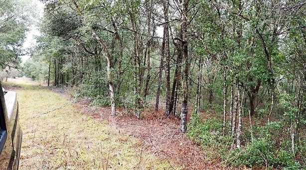 2970 County Road 44A - Photo 7