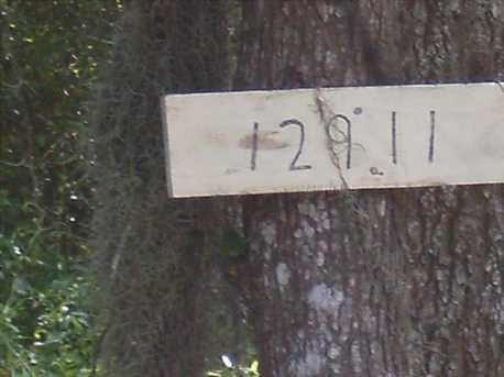 12911 S Magnolia - Photo 13