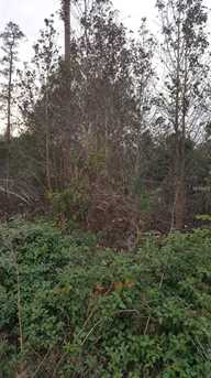 Cooter Pond Road - Photo 1