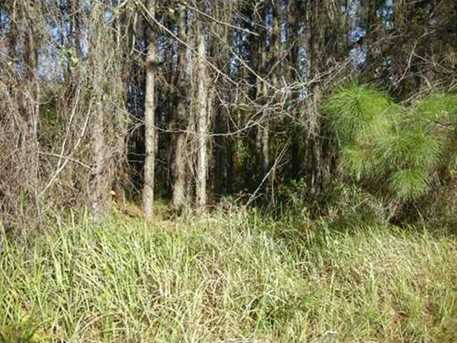 Old Pasco Rd - Photo 2