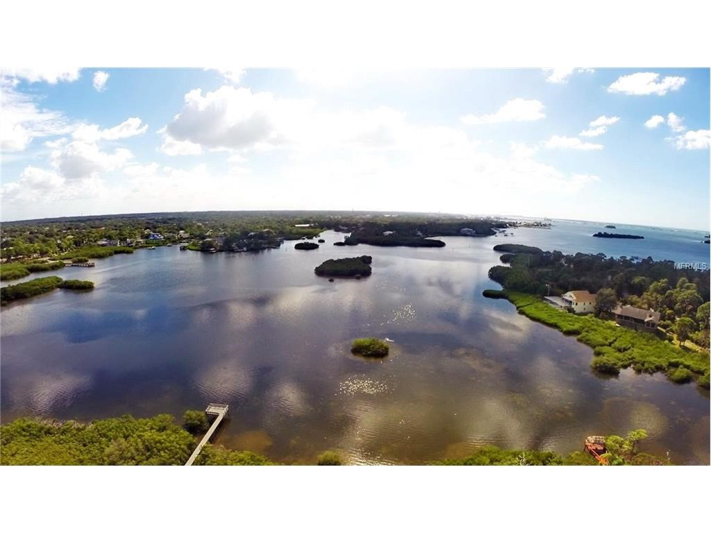 Residential for Sale at 136 Sanctuary Dr Crystal Beach, Florida 34681 United States