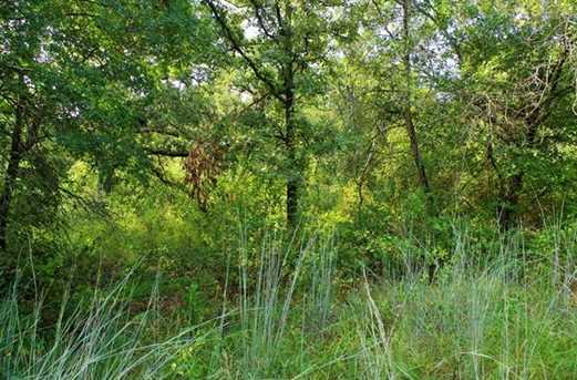 Tr 16  Timber Creek Circle - Photo 3