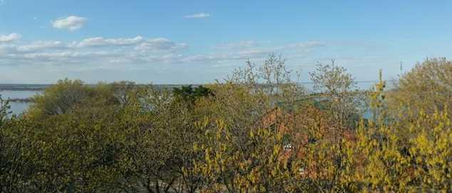 Lot 8  Island View Drive - Photo 9
