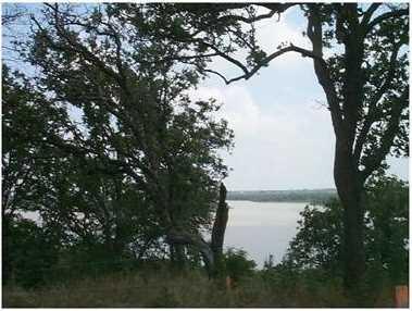 2313 Oak Bluff Dr - Photo 3
