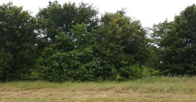 L 227  Choctaw Trail - Photo 3