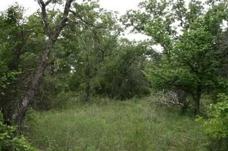 1191  Prickly Pear Trail - Photo 11