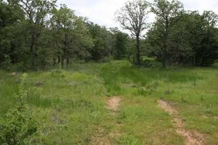 1191  Prickly Pear Trail - Photo 3
