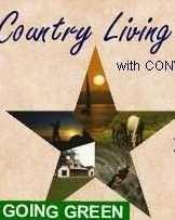 16000  Hcr 1231 / Star Ranch Drive - Photo 13