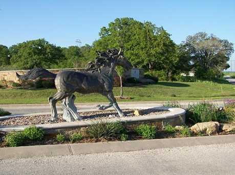 239  Mustang Springs - Photo 7