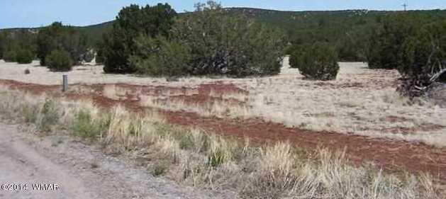Sacred Cir Ranchos Ph 1 L 18 - Photo 3