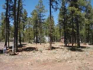 Parcel 106 Ponderosa Trail - Photo 1