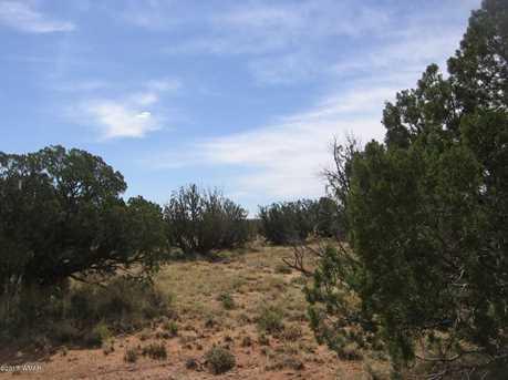 Lot 390 Chevelon Canyon Ranch - Photo 19