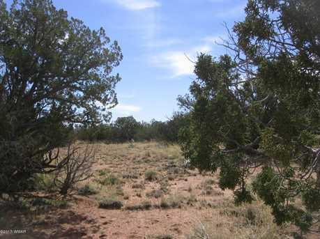Lot 390 Chevelon Canyon Ranch - Photo 15