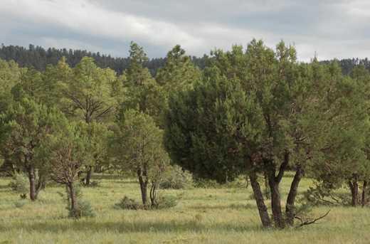 L 6 Porter Mountain Road - Photo 1