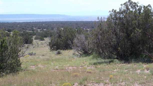 Lot 551 Woodland Valley Ranch, Unit 5A #5A - Photo 3
