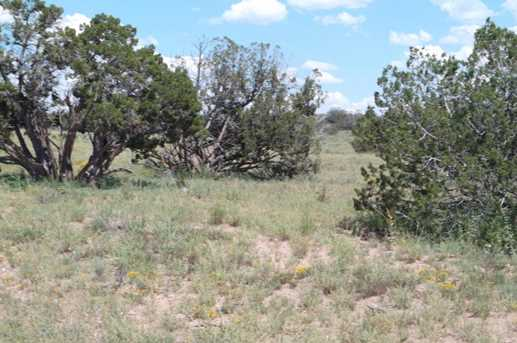 Lot 551 Woodland Valley Ranch, Unit 5A #5A - Photo 5