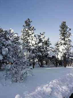 3821 W Sugar Pine Way - Photo 35