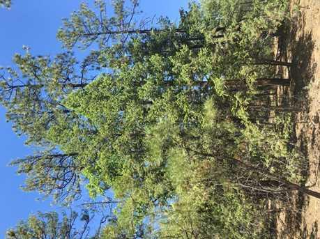 212-45-009 Rim Spur Spur - Photo 5