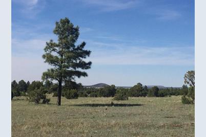 Tbd Lone Horseman Road - Photo 1