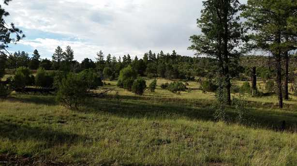 5194 Pinedale Wash Rd - Photo 9