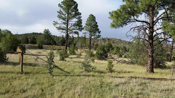 5194 Pinedale Wash Rd - Photo 5