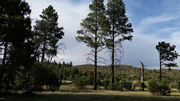 5194 Pinedale Wash Rd - Photo 7