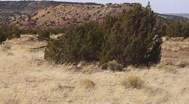 Lots 276, River Springs Ranch - Photo 3