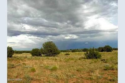 Lot 650 Chevelon Canyon Ranch - Photo 1