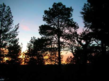 2075 E Ridge Drive - Photo 55